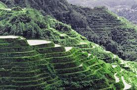 saya sa mga mata ng mga turista at pati na rin sa mga taong pilipino